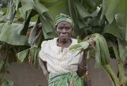 woman with banana leaf